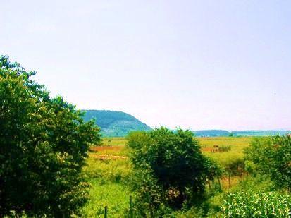 real estate bulgaria in varna area