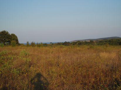 Land for sale near Sozopol