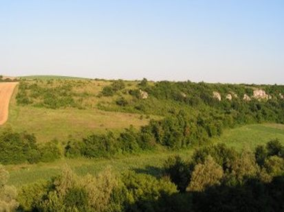 Land for sale in Ruse
