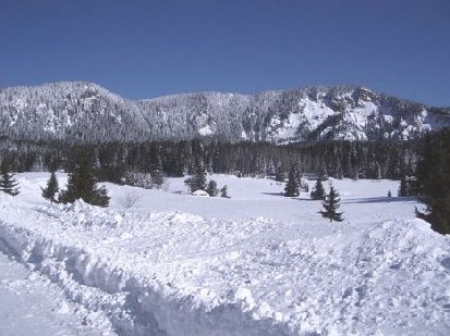 Best Bulgarian ski property