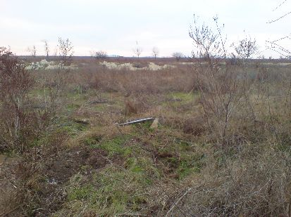 Bulgarian land for sale