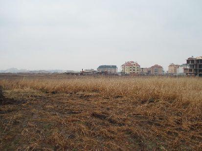 Bulgarini land invest